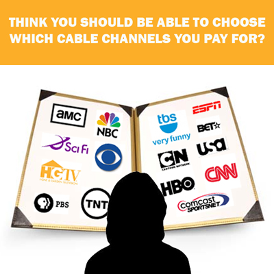A la carte cable television pricing