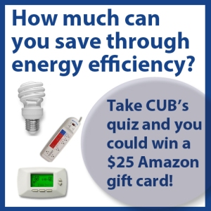 efficiencyquiz